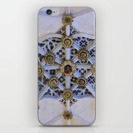 Burgos Dome 3 iPhone Skin