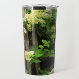 White Hydrangeas in Bloom on Wooden Fence Travel Mug