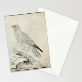 020 St martins vogel (Ger)2 Stationery Cards