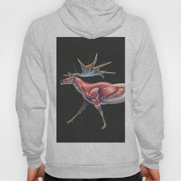 Megaloceros Giganteus Muscle Study (No Labels) Hoody