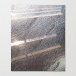train window Canvas Print