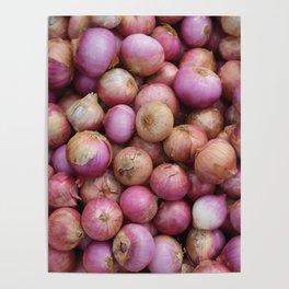 Food Illustration Onions Poster