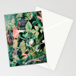 Fairy Vegetable Garden Stationery Cards