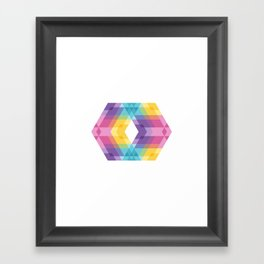 Fig. 019 Framed Art Print