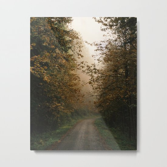 Oregon Fall Road Metal Print
