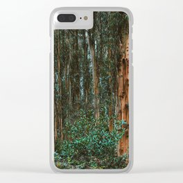 Eucalyptus Trees Near Berkeley California Clear iPhone Case