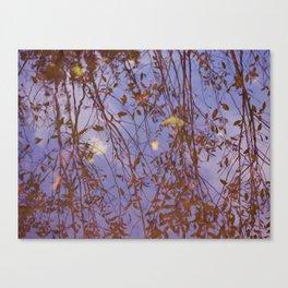 A Yakima Reflection II Canvas Print