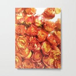 Cluster Of Orange Roses Metal Print