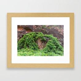 Heart of Hearts in Nature (Havasu Falls, Supai, AZ) Framed Art Print