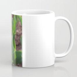 First Sign Of Spring Coffee Mug