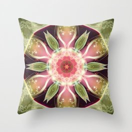 Mandalas for Times of Transition 22 Throw Pillow