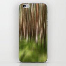 Rügenwald no.3 iPhone & iPod Skin