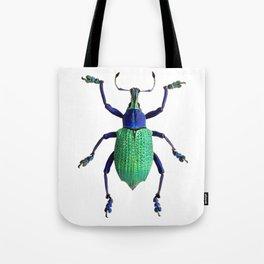 Eupholus Weevil Beetle Tote Bag