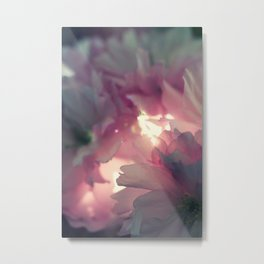 sakura - close up - one Metal Print