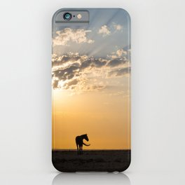 Horse in the desert of Namibia | Africa travel photography iPhone Case