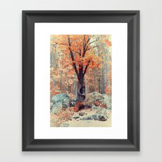 Old New Oak at Autumn Framed Art Print