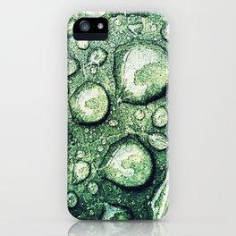 LEAF 002 iPhone Case