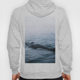 Humpback whale in the minimalist fog - photographing animals Hoody