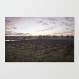 Barossa Valley Sunrise Canvas Print