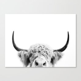 Peeking Cow BW Canvas Print