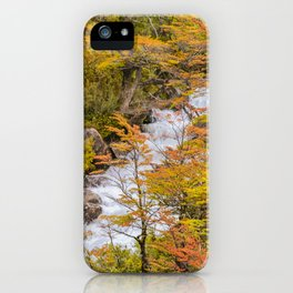 Colored Forest Landscape, Patagonia - Argentina iPhone Case
