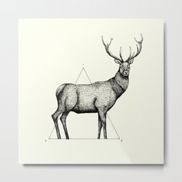 'Wildlife Analysis II' Metal Print