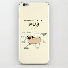 Anatomy of a Pug iPhone & iPod Skin