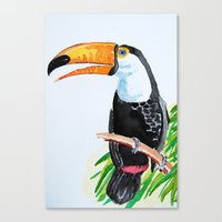toucan Canvas Prints featuring Toucan by The Traveling Catburys