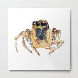 Jumping Spider painting watercolour Metal Print