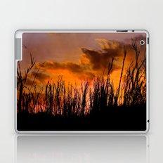 Fall's First Sunset Laptop & iPad Skin