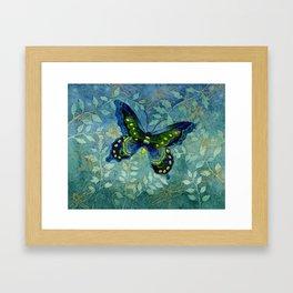 Blue Butterfly Framed Art Print