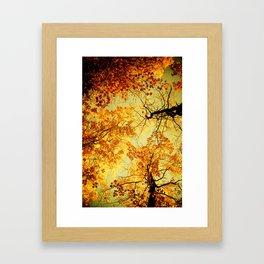 We Are Starlight, We Are Golden Framed Art Print