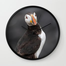 Puffin close up on cliff Wall Clock