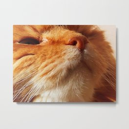 The nose knows dinner Metal Print
