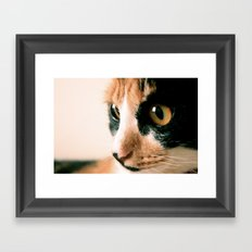 Thinking Cat Framed Art Print