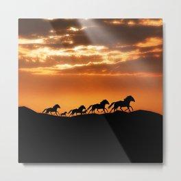 Horses in sunset Metal Print