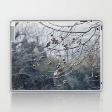 Winter Laptop & iPad Skin