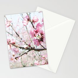 Peach Blossoms 17 Stationery Cards