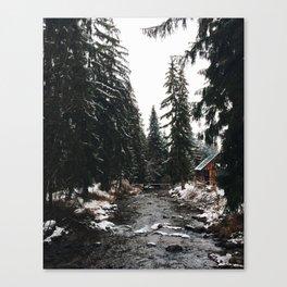 winter mood. Canvas Print