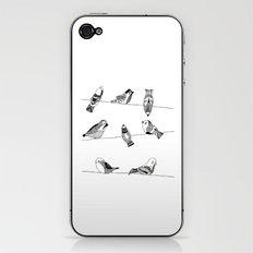 Polish birds iPhone & iPod Skin