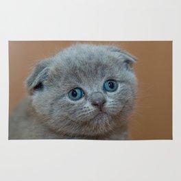 Cat_20180102_by_JAMFoto Rug