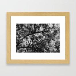 PESPACE Framed Art Print