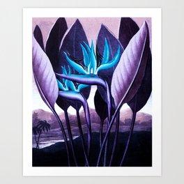 Birds of Paradise Temple of Flora Purple Turquoise Art Print