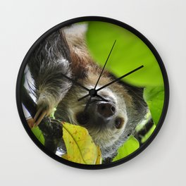 Sloth_20171105_by_JAMFoto Wall Clock