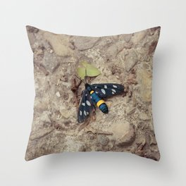 Amata phegea moth Throw Pillow