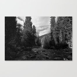 River B&W Canvas Print