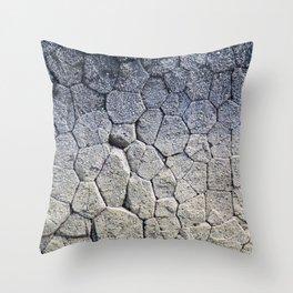 Nature's building blocks Throw Pillow