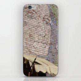 Paint Brick Face iPhone Skin
