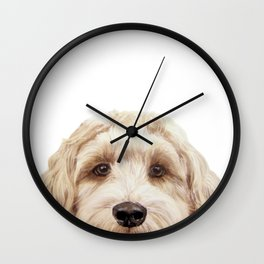 Labradoodle Beige Original painting by miart Wall Clock