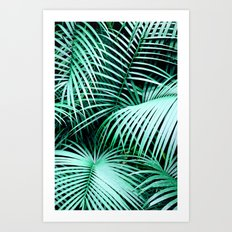 Palm fronds Art Print